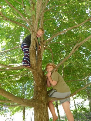 Lijah and Harvey up in a tree