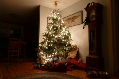 another picture of the christmas tree