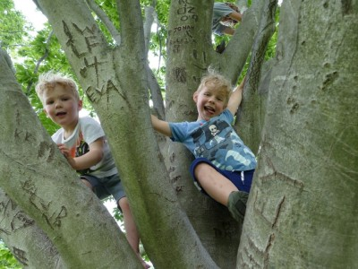 Lijah and Zion posing up a tree