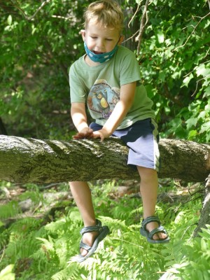 Elijah sitting astride a tree limb