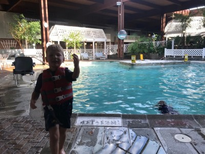 Lijah, the hotel pool, and its plants