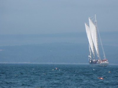 a schooner sailing away from us, among lobster bouys