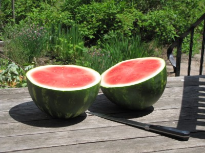 two halves of a watermelon on the back porch