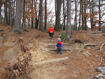the boys climbing up timber stairs set into a steep hillside in the woods