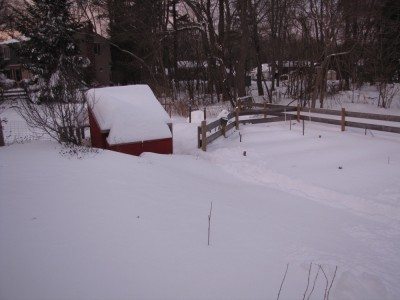 the garden and chicken coop in a lot of snow