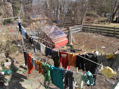 clothes hanging on the line