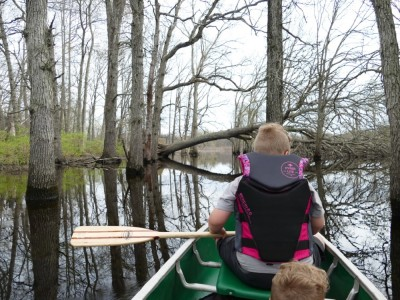 canoeing in the flooded woods