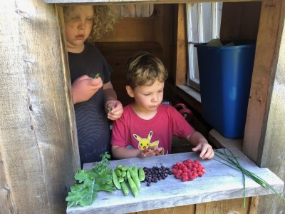 Harvey and Lijah laying out a harvest of berries and veggies on the playhouse counter